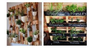 Verticaal tuinieren tips groene muur