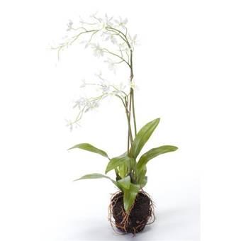 Fleurdirect Tijgerorchidee wit kunstplant